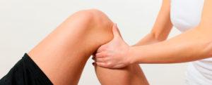 fisioterapia integrativa